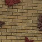 004-Thumbnail vlinders