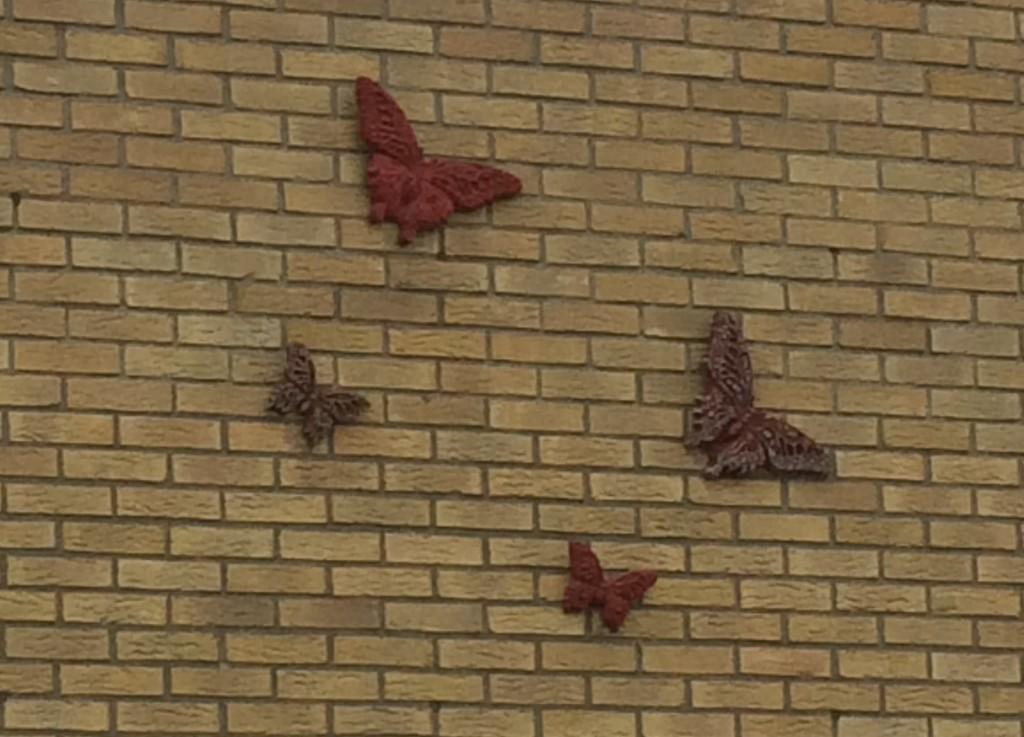 004-Vlinders